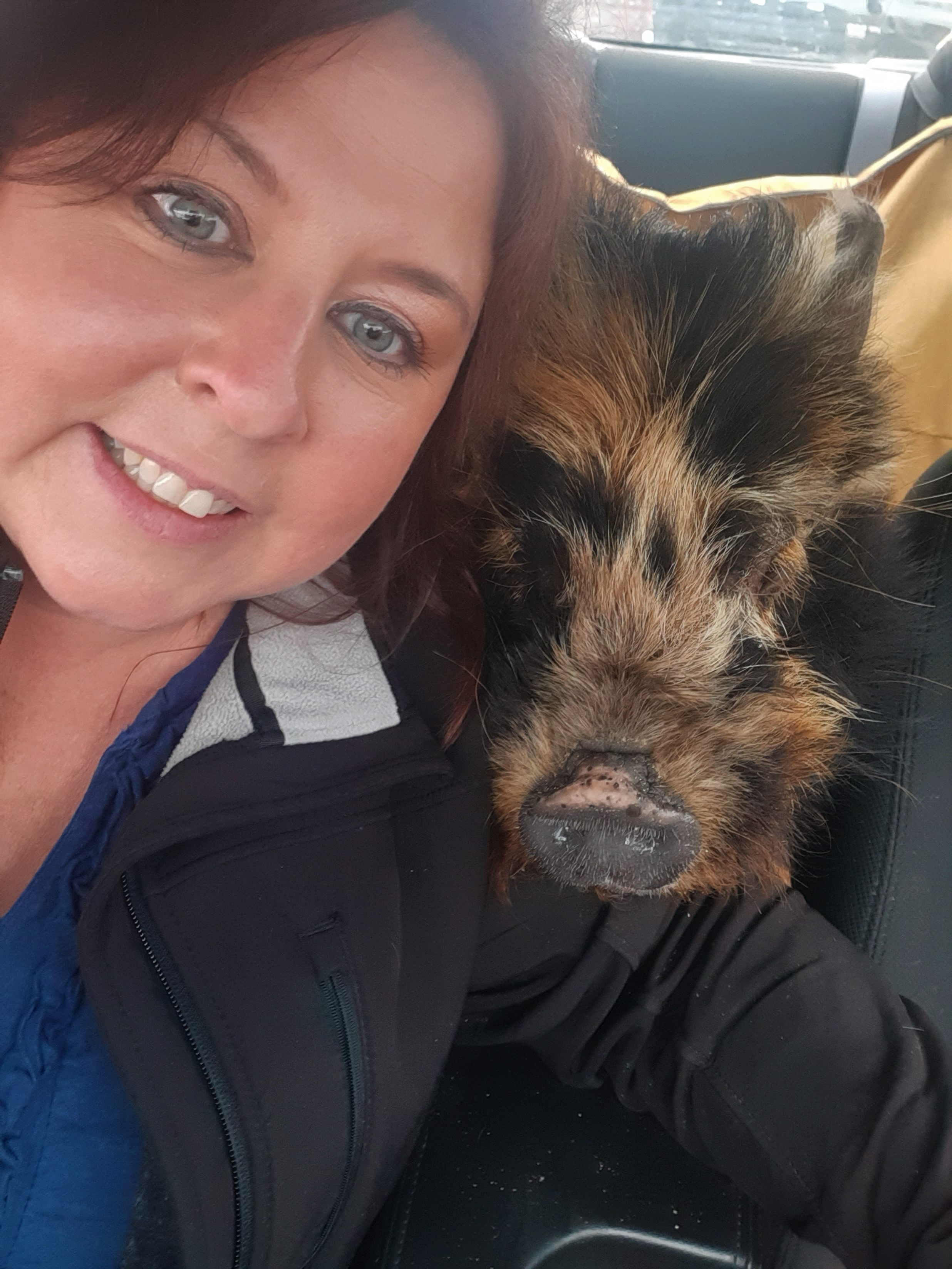 Selfie with pig
