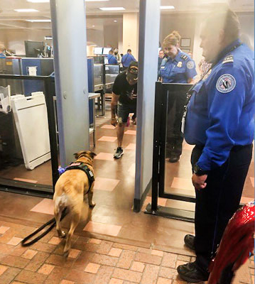 TSA, Paws and Stripes Ease Flying Fears for New Mexico Veterans