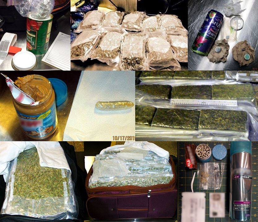 Discovered various incidents involving narcotics