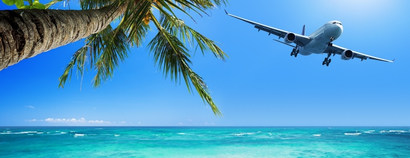 A photo of a palm tree, ocean, and a plane fllying on the sky