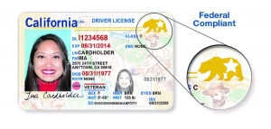 CA REAL ID Example
