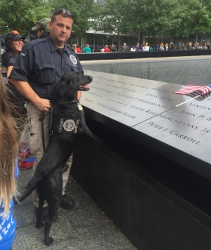 TSA explosives detection canine Ssiller and TSA Canine Handler Christopher Neeson visit the World Trade Center Memorial to pay respects to Stephen G. Siller, the fallen fire fighter who is the dog's namesake. (TSA photo)