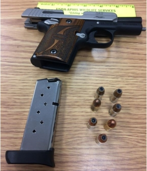 TSA officers prevented a woman from bringing this loaded handgun onto an airplane today at CHO Airport.