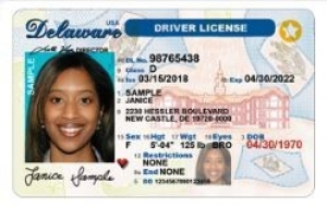 DE REAL ID Example