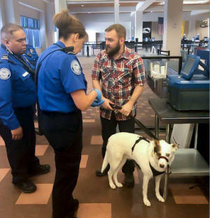 TSA officers explain screening procedures to veteran with his dog