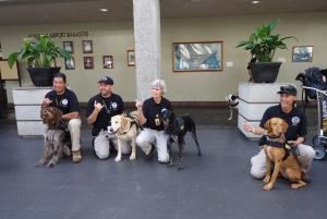 TSA working canine teams supporting security operations at Daniel K. Inouye International Airport in Honolulu.