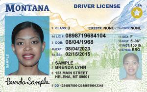 MT REAL ID Sample