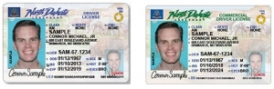 North Dakota sample driver licenses image