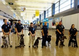 TSA canines and handlers