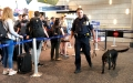 A Connecticut State Police trooper and his TSA passenger screening canine working at the Bradley International Airport checkpoint line.