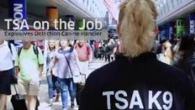 TSA on the job: Explosives detection canine handler