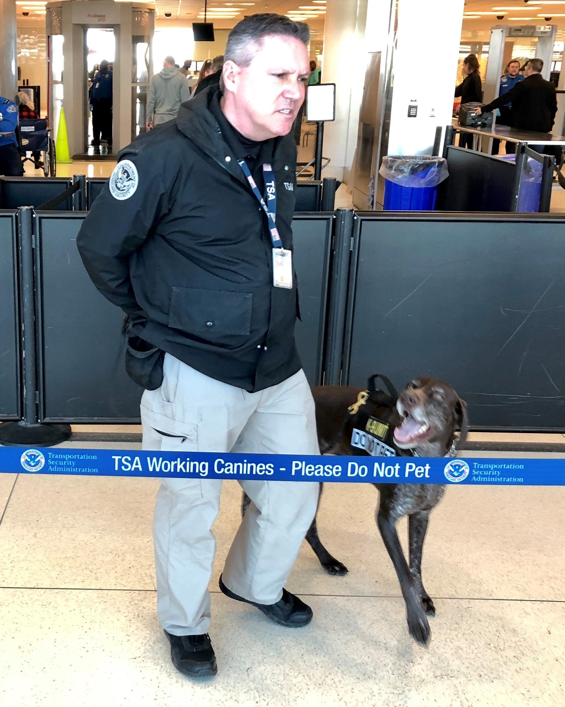 TSA Canine Handler Todd Fox works in a security checkpoint line at Philadelphia International Airport with Don, a German Short-haired Pointer. (TSA photo)