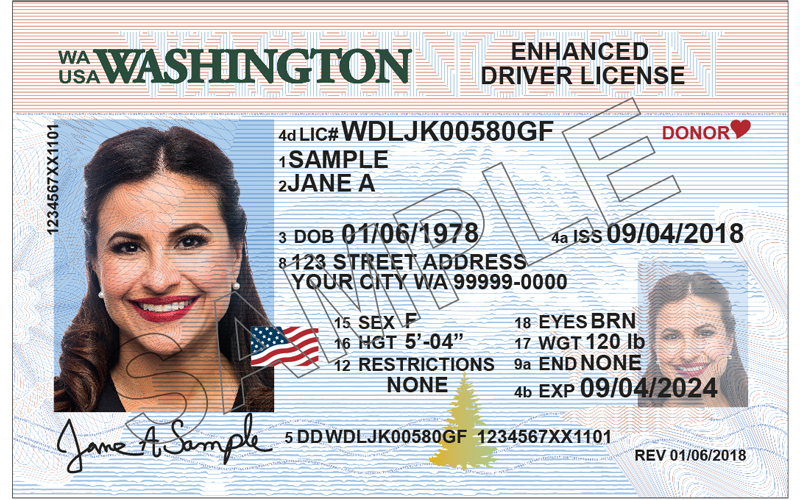 Example of Washington State ID
